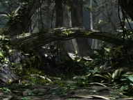 the-forest-v1